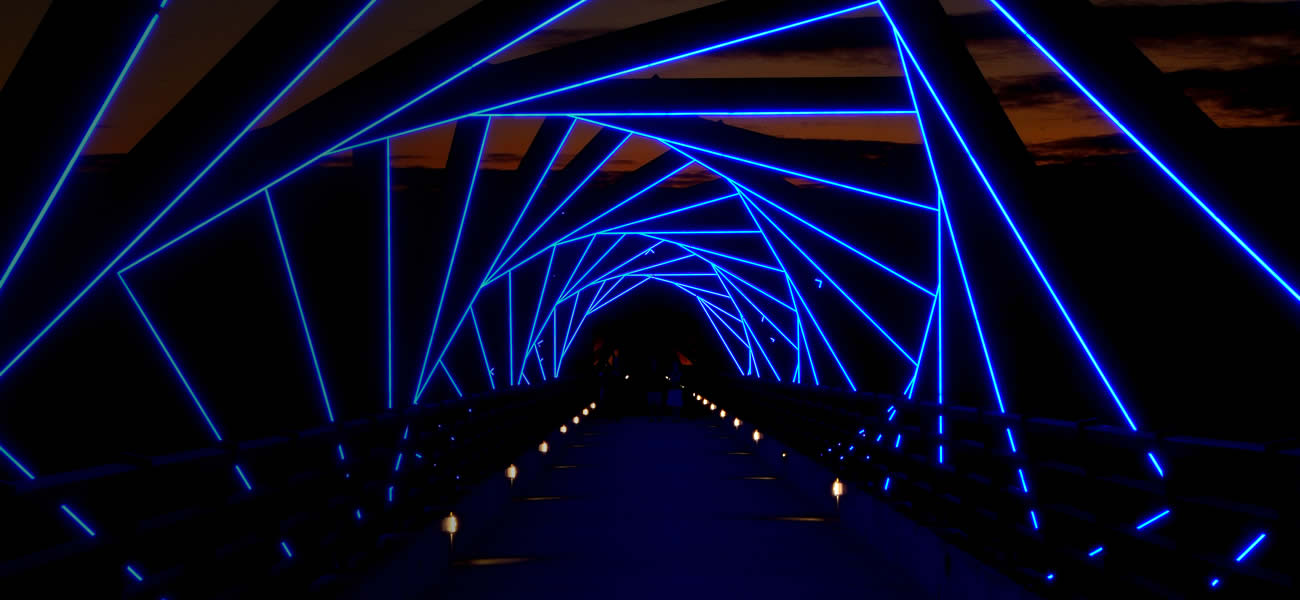 Bridge Night